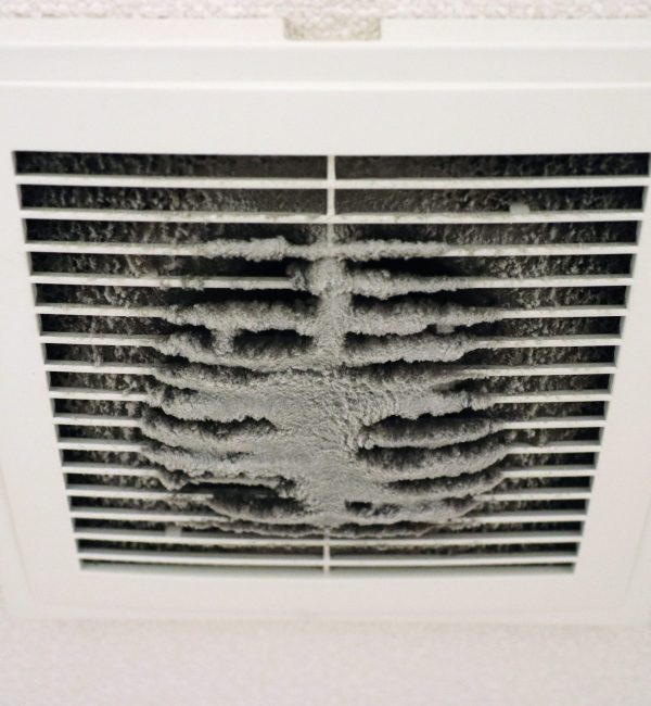 Dust,Of,The,Vent